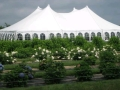 Rental store for 60  x 80  Evolution Tent in Honesdale PA
