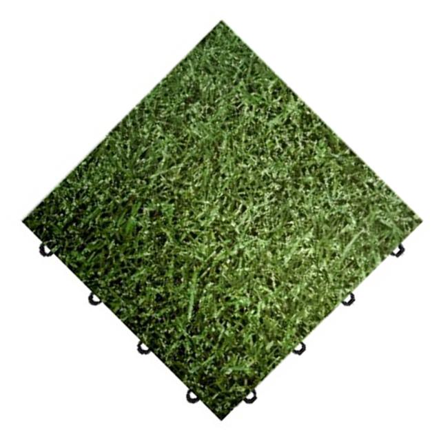 Where to find Grass  Floor in Honesdale